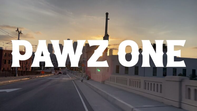 Pawz One – Good With That